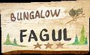 vila-fagul-3-stele-cheile-gradistei-fundata
