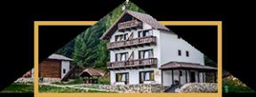 imagine-iconica-vila-pinul-cazare-cheile-gradistei-fundata