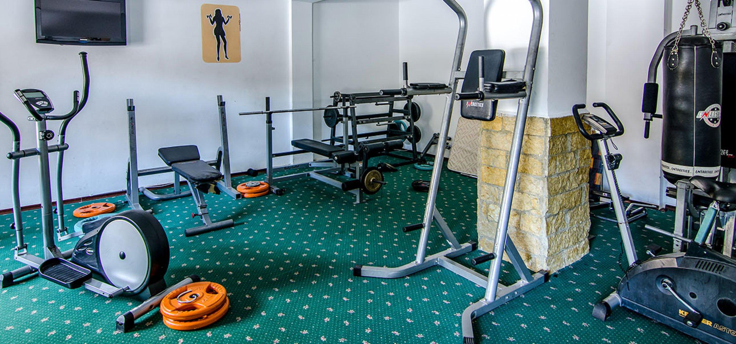 sala-fitness-vila-ana-vile-moeciu