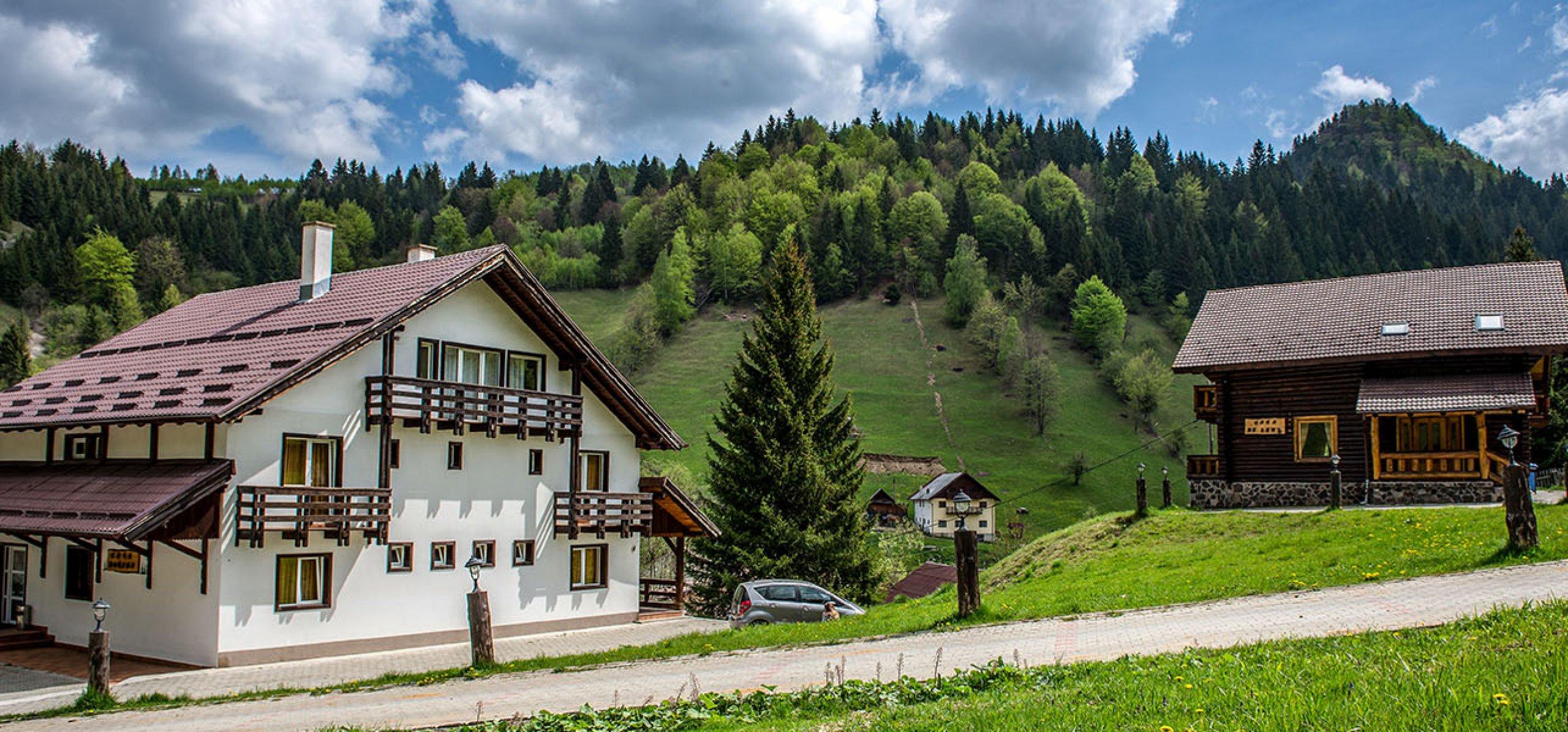 vila-de-lemn-peisaj-montan-cazare-in-moeciu-1